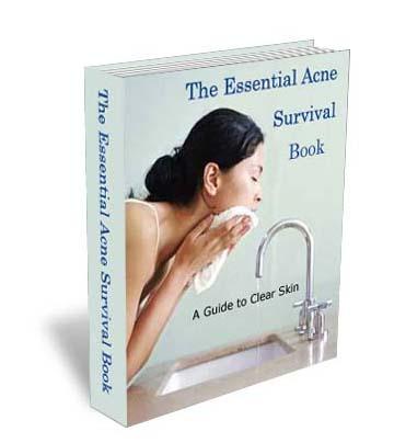 book Fundamentos Teóricos De Direito Ambiental 2009
